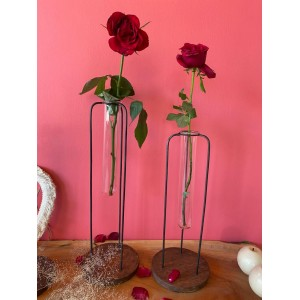 Testtube vase Planter