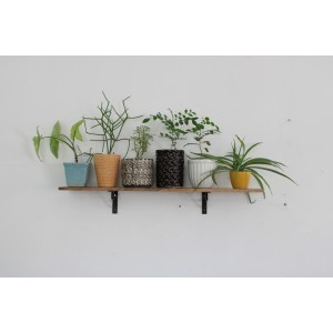 Simple Shelf